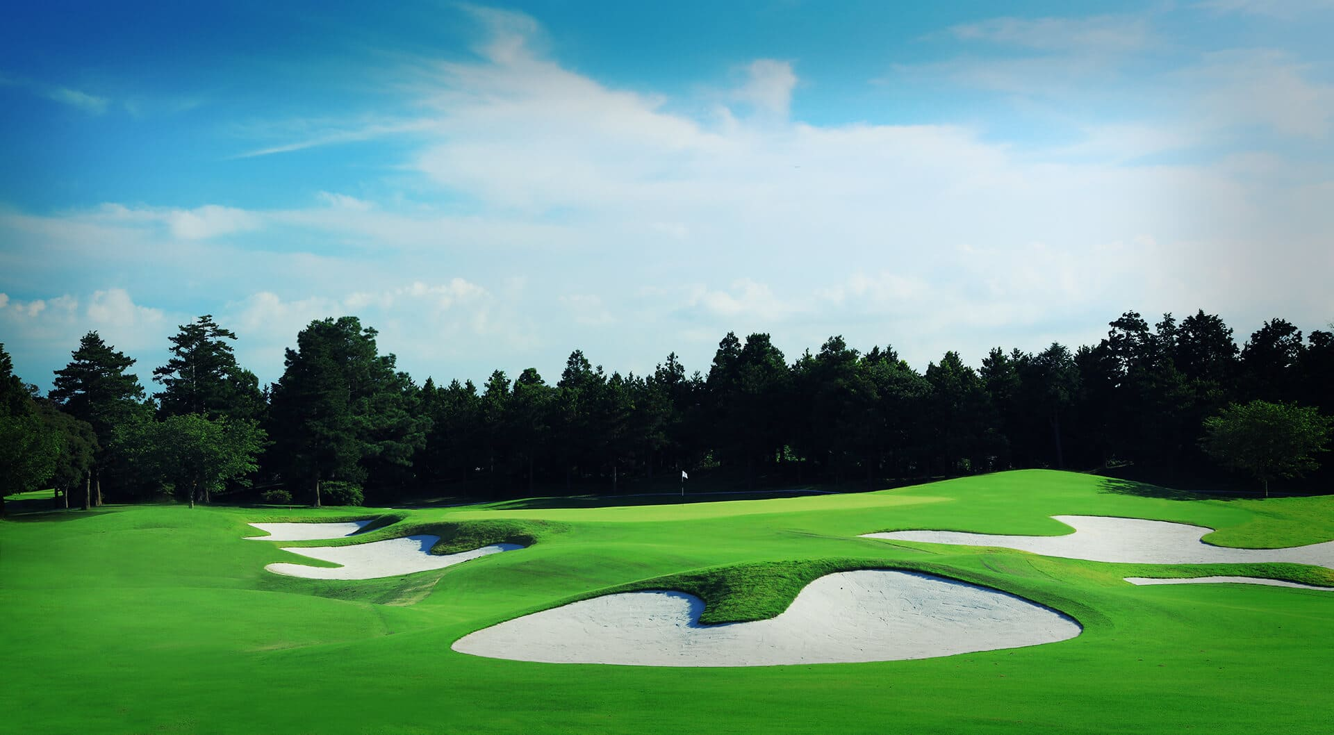 ザ ロイヤル ゴルフ クラブ THE ROYAL GOLF CLUB - ザ・ロイヤルゴルフクラブ